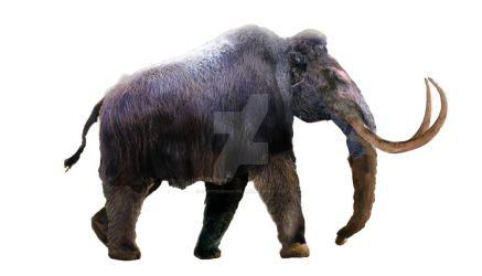 Woolly Mammoth - WIP by Dantheman9758
