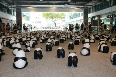 1600 black and white Butts! by jherqin