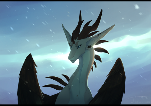 it's cold up here by draktau