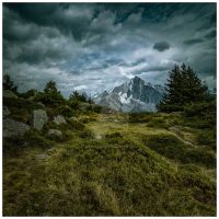 Hide and Peak by JeRoenMurre