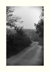 Country road by WinterWood91