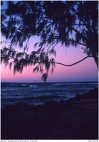 Noosa Heads Sunset Silhouette by aCreature