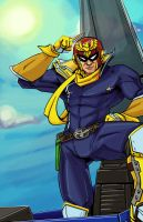Captain Falcon by PumaDriftCat