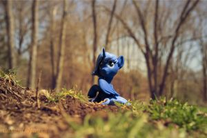 Just Luna by dustysculptures