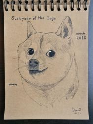 Year of the Doge by Dr4phT