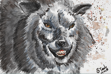 Savage watercolor wolf by SulaimanDoodle