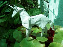 Unicorn by Figuer