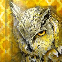 Owls Stare by oreillyfinearts