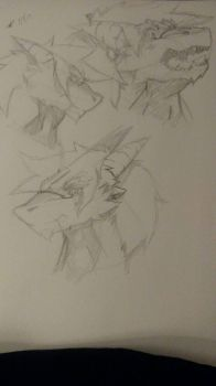 Facial Expressions Practice by Derp-6000