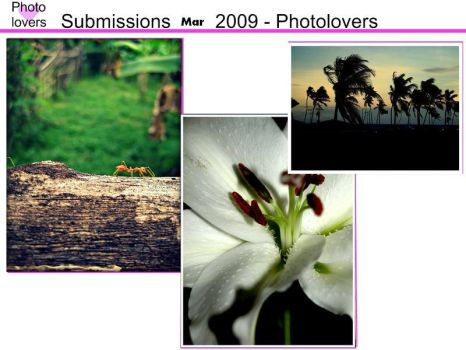 Submissions March 2009 by PhotoLovers