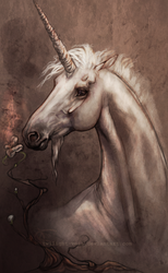 The Unicorn and the Flower by Twilight-Veil