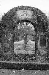 The Gate by Artsupply