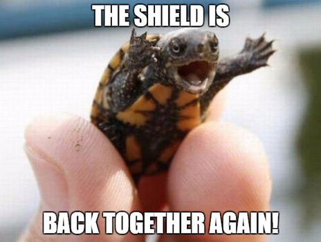 Happy Baby Turtle-The Shield by EarWaxKid