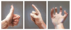 Hands Studies by cury