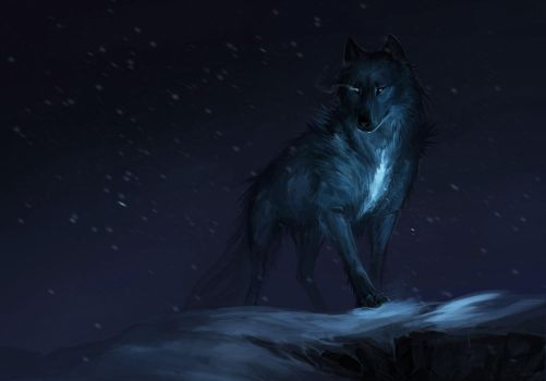The Wolf by Allagar