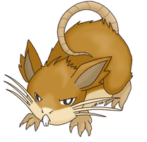 Raticate for Domatchi
