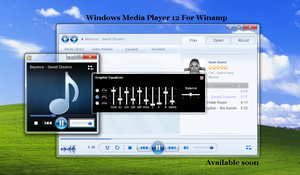 Windows Media Player 12 for wi by XceNiK