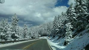 Snow at Angel Fire by Meiprime31