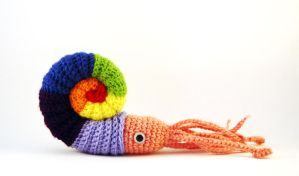 Colourful Amigurumi Ammonite by kaelby