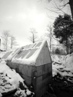 The IceHouse by viviP