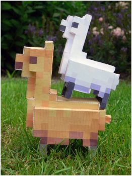 And another little llama... by N0rks