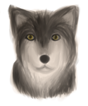 Wolfie by unclaimed--username