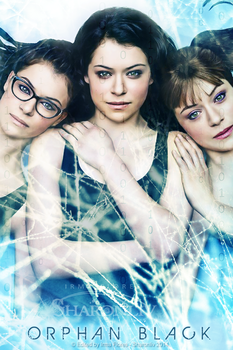 Orphan Black S2 by Sharonliv-Arzets