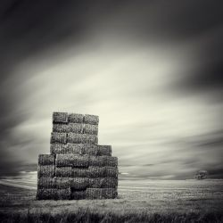 The Open Space V by DenisOlivier