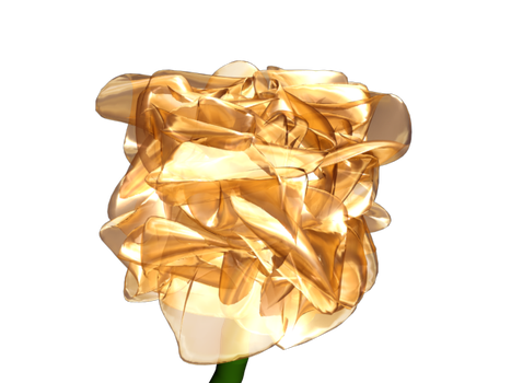Golden Rose by Mudface