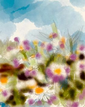 Daisies by KateHodges