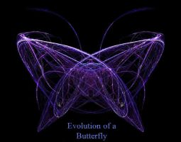 Evolution of a Butterfly by R-a-j