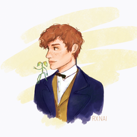 Newt Scamander - Fantastic Beasts by rxnai