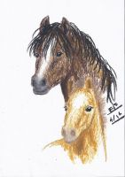 Mare and Foal by Liliandril