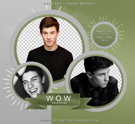 PNG PACK #016 - SHAWN MENDES by WOWResources