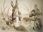 Tales of Benjamin bunny by SulaimanDoodle