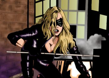 Black Canary by deanfenechanimations