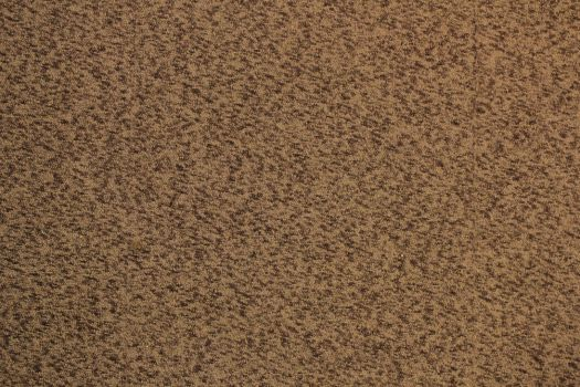 Carpet (stock) by justanotherdood