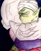 Piccolo by Xentry