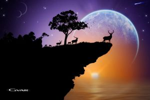 Lone Stag by GVAR-Photography