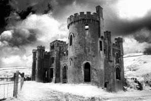 Clifden Castle by seancoetzer