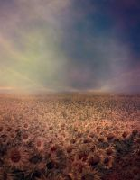 Premade Background 46 by maiarcita