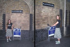 Platform 9 and 3 Quarters by Leaviel