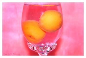 Apricots in glass of water by yesmeena