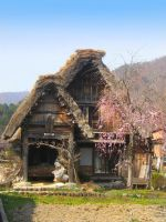 Old Japanese Village by PirateOfYourDreams