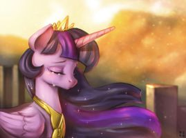 What Princess is.. by mrs1989