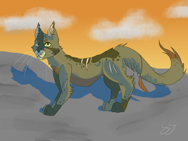 Redfin by Crowfeather6789