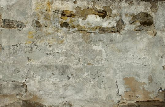 Wall Texture - 43 by AGF81