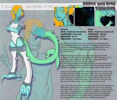 Information Sheet: Arani and Amo by Nefepants