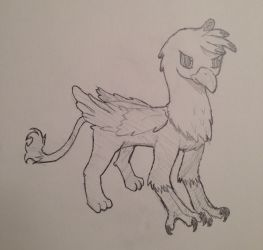 Talon the Gryphon by ChordProgession