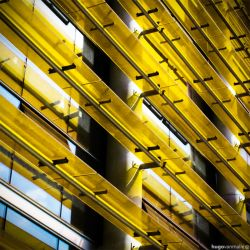 Yellow by hugovanmalle